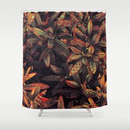 leaves evolved 5 Shower Curtain