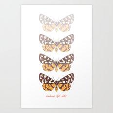 Ranchman's Tiger Moth Art Print