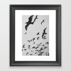 Flock 2 Framed Art Print