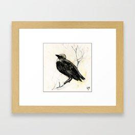 Starling Framed Art Print
