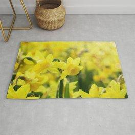 Bright Yellow Narcissus Rug