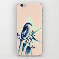 Hashtag Blue Bird iPhone & iPod Skin