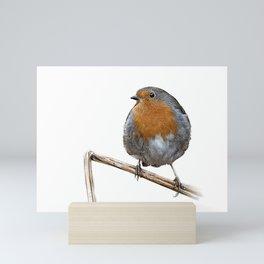 Robin red breast wildlife birds Mini Art Print