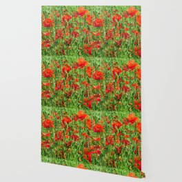 Red Floral Explosion Wallpaper