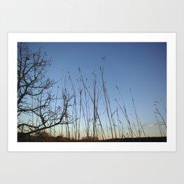 Prairie Twilight Art Print