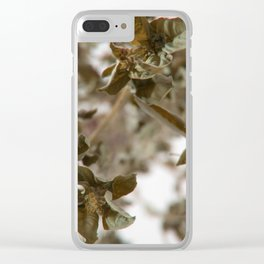 Drying Basil Clear iPhone Case