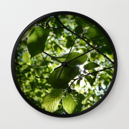Sunlight Canopy Wall Clock