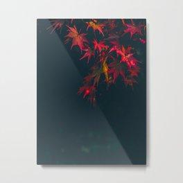 Sensual Red Japanese Maple Metal Print