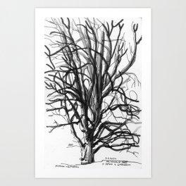 209 2020 Heritage Tree Art Print