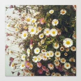 Wall of Daisies Canvas Print