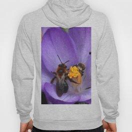 Bees and Crocus Hoody