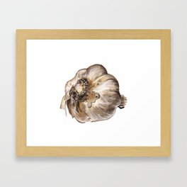 Garlic Framed Art Print