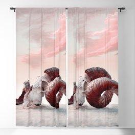 Aries Blackout Curtain