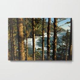 View through the treesH Metal Print