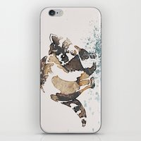 racoon iPhone & iPod Skins featuring Racoon Illustration by Caroline Campeau