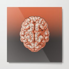 Puzzle brain GINGER / Your brain on puzzles Metal Print