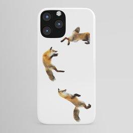 Fox Snow Jump iPhone Case