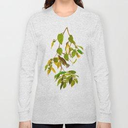 Autumnal Warbler Bird Long Sleeve T-shirt