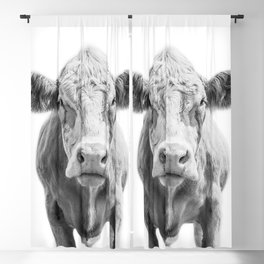Highland Cow Portrait | Animal Photography | Black and White | Art Print Minimalism | Farm Animal Blackout Curtain