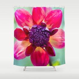 Dahlia / In The Garden / 2 Shower Curtain