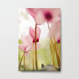 Cyclamen Forest Metal Print