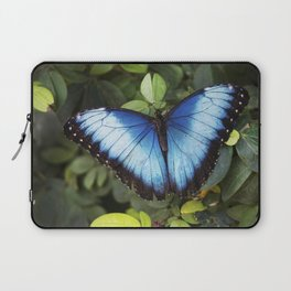 Blue Morpho Butterfly Laptop Sleeve