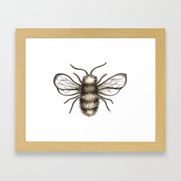 Bumble Bee - Katrina Niswander Framed Art Print