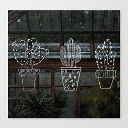 Funky Cactus Canvas Print