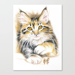 Maine Coon Kitty Canvas Print