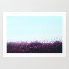 Magenta Field Art Print