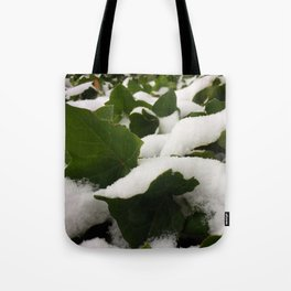 Ivy in Snow Tote Bag
