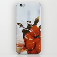 Count iPhone & iPod Skin