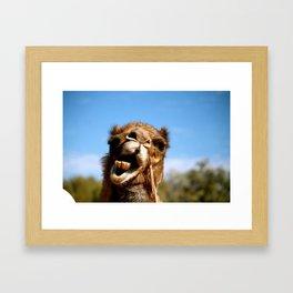 Upset Framed Art Print