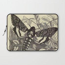 Death's-head Moth Laptop Sleeve