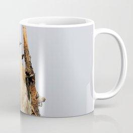 Busy Downy Woodpecker Whittling Pear Tree Wood Coffee Mug