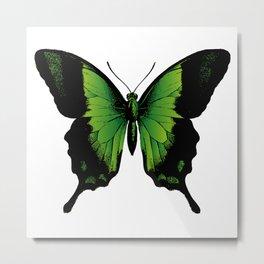 Green Butterfly Metal Print