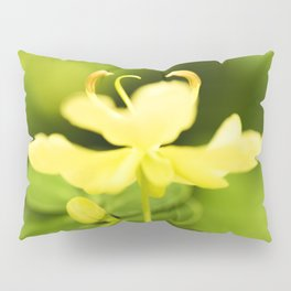 Worley's Butter Cream Senna Pillow Sham