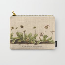 Antique Moss Lithograph Carry-All Pouch