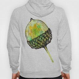 acorn Hoody