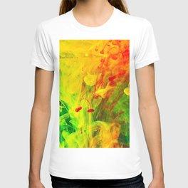 Polish Fountain T-shirt