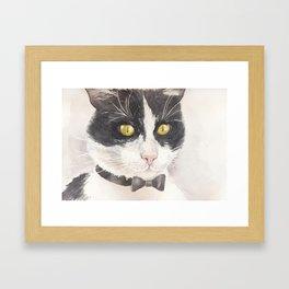 Tuxedo cat Framed Art Print