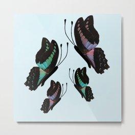 Purple and Blue Butterflies  Metal Print
