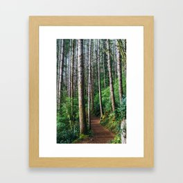 Trees: III // Oregon Framed Art Print