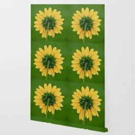 Back of the Sunflower Wallpaper