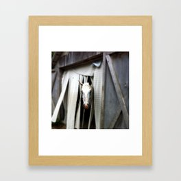 Eagle Eye Framed Art Print
