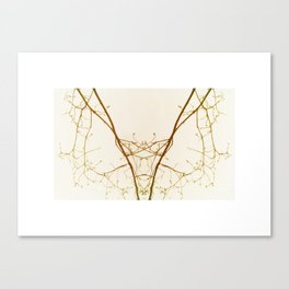 branches#01 Canvas Print
