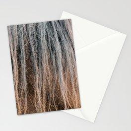 Horse's mane close-up Stationery Cards