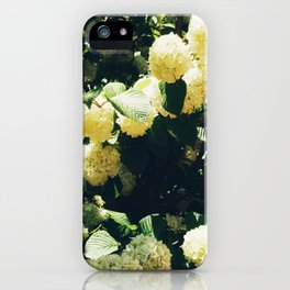 Yellow Snowballs II iPhone Case