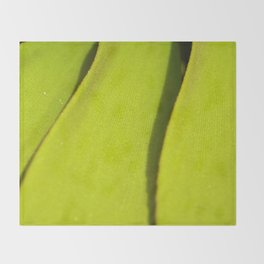 Vegetal lines Throw Blanket
