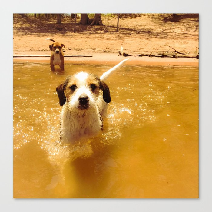 Water Puppies Canvas Print